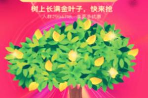 双12金钱树,淘宝双12金钱树如何种植